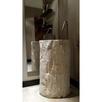 Carved Naturally Petrified Wood Pedestal Sink